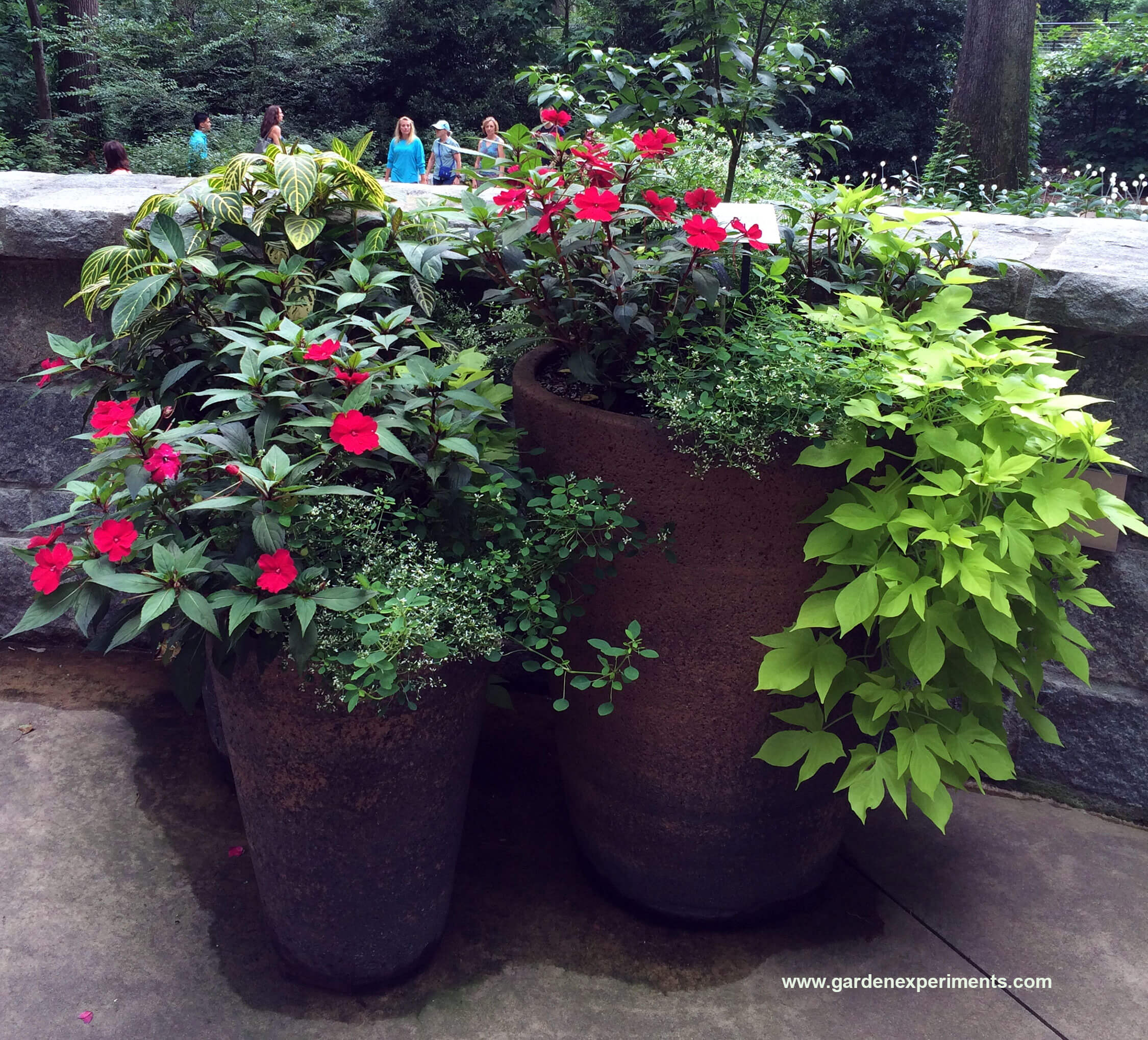 Container Gardening Ideas: Ideas For Container Gardens