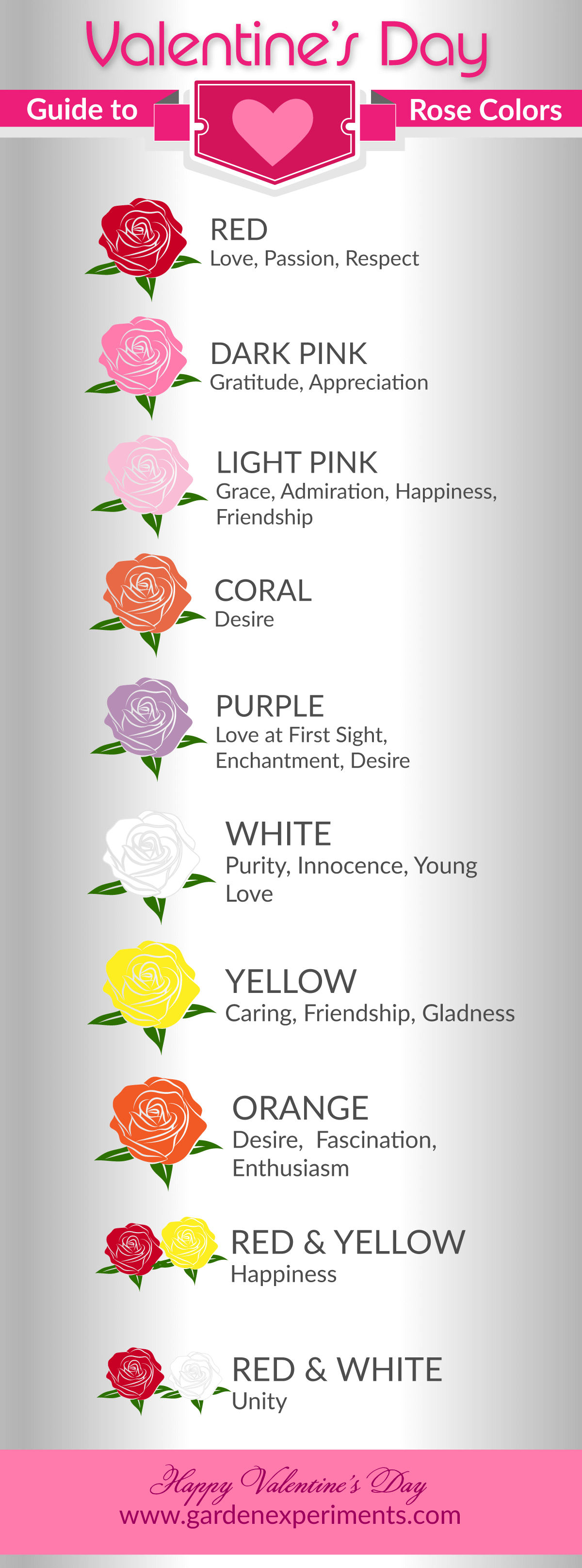 Rose Color Meaning Guide Car Owners Manual