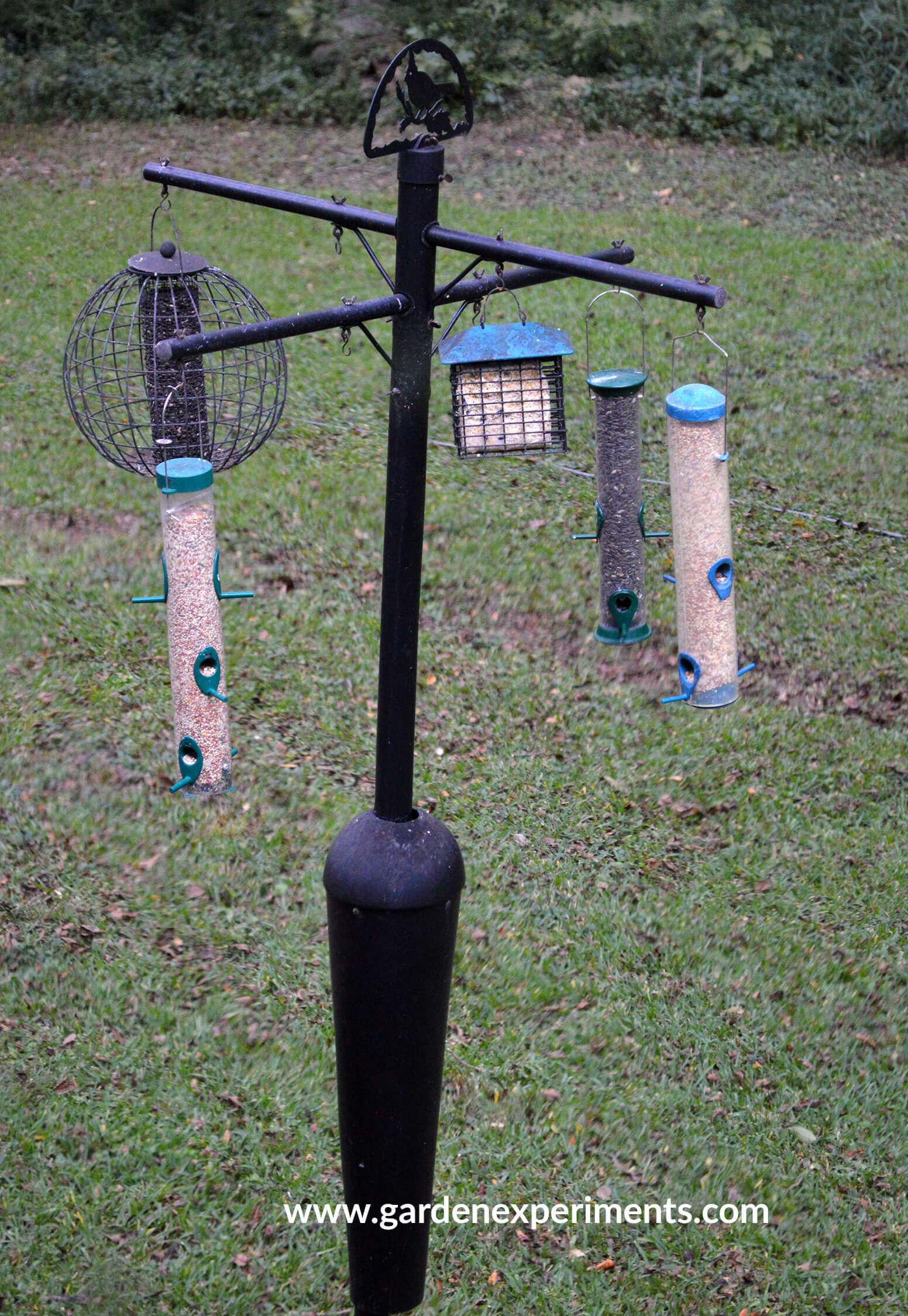 birds with squirrel pole to bird feeder platform backyard how proof