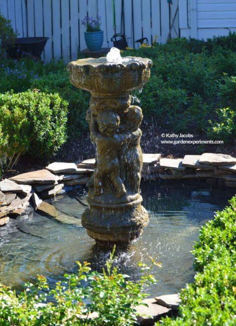 Gazing Pool at Colonnade Garden