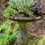 Don't Throw Out that Old Bird Bath! Make It a Planter