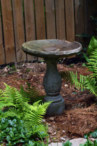 The old bird bath