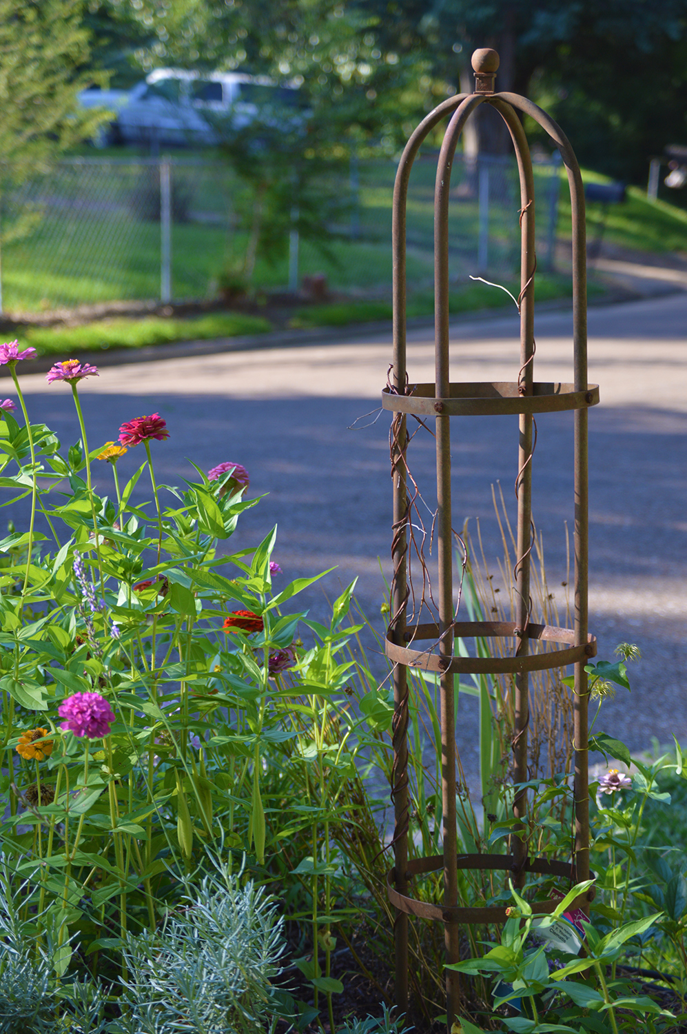 Add Structure, Style, & Color to Your Garden with a Trellis & Flowering Vine - Freestanding Rounded Trellis