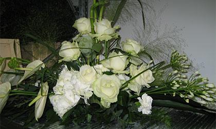 Bloemen  Planten  GardenforumTongeren