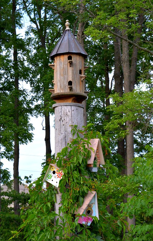 A collector of bird houses places them through out the garden. They are more art than functioanl, by Robert Pavlis Adding Art to the Garden