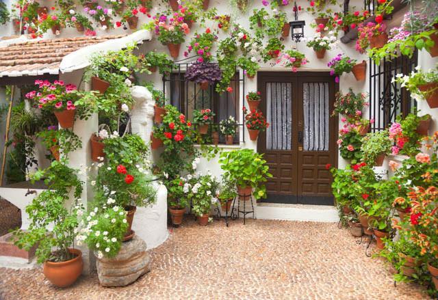 Patio Containers Inspiring Garden Ideas For All Gardeners