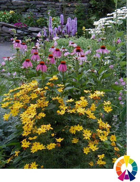 explore cornell - home gardening