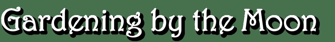 Logo GBTM3