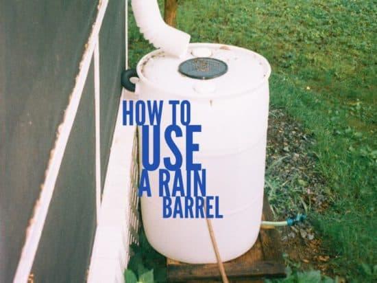 how to use a rain barrel