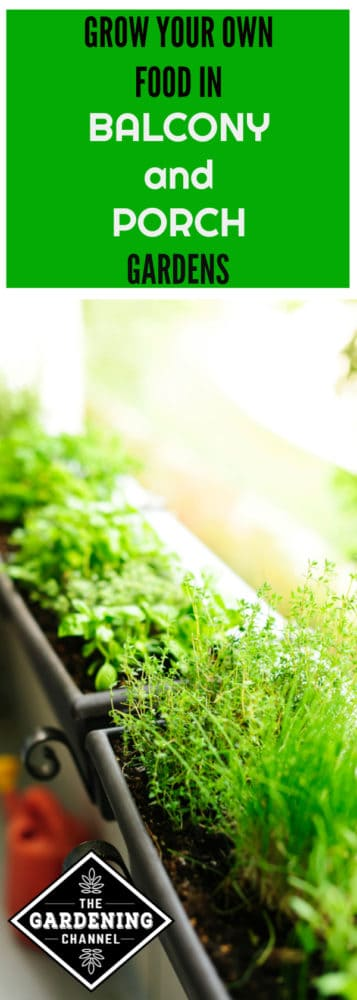Balcony Railing Herb Garden With Text Overlay Grow Your Own Food In Balcony  And Porch Gardens
