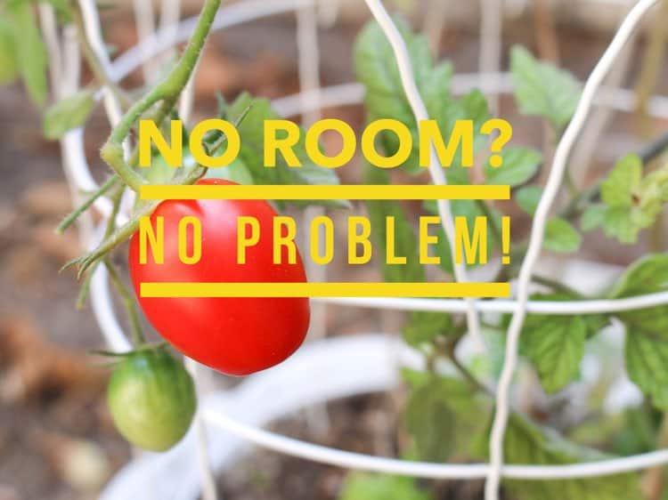 Small Space Gardening Ideas Gardening Channel
