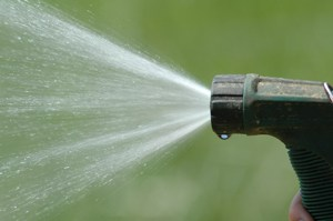 How to Conserve Water When Gardening
