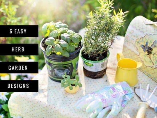 Six Easy Herb Garden Designs