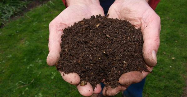 how to use finished compost