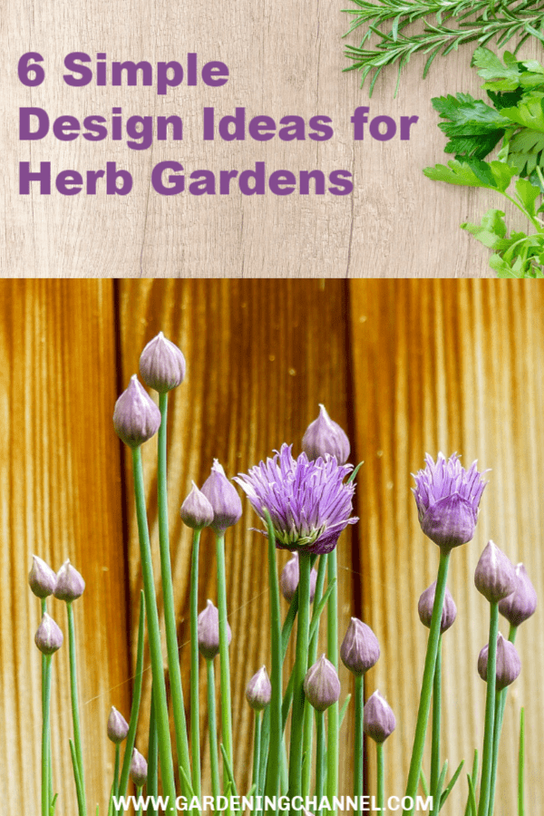 herbs on cutting board and chives in herb garden with tect overlay six simple design ideas for herb gardens