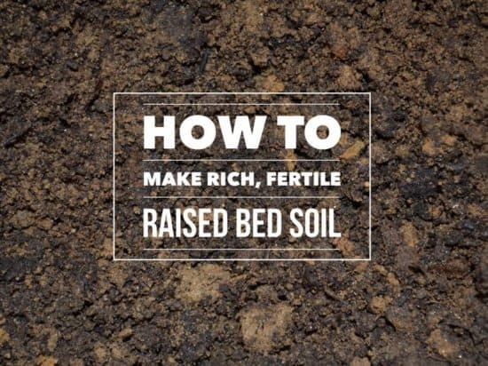 how to make raised bed garden soil