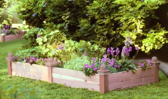 Raised Beds Take Gardening To A New Level