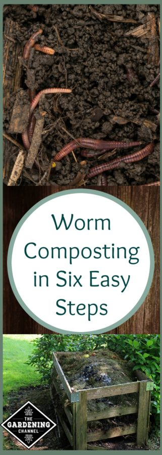 worm composting made easy