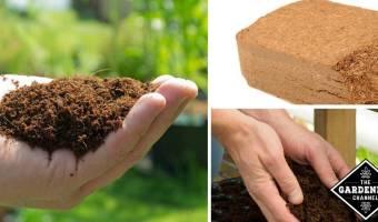 Benefits of Coir Mulch