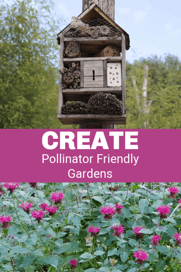 bee house and bee balm with text overlay create pollinator friendly gardens