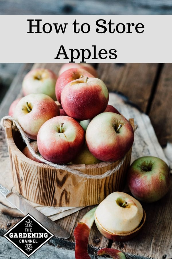 peeling apples for storage with text overlay how to store apples