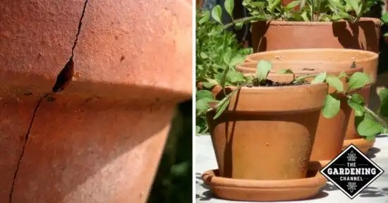 Caring for terracotta pots gardening channel how to maintain terracotta flower pots workwithnaturefo