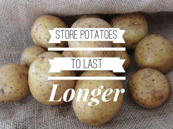 Storing Potatoes - Gardening Channel