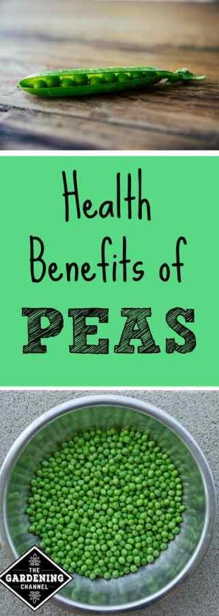 health benefits of peas