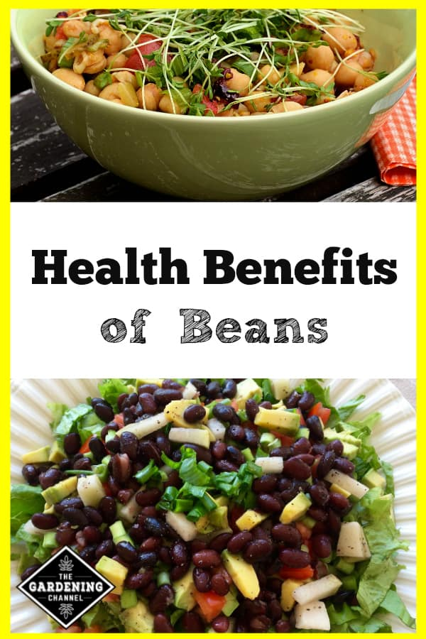 chickpea soup and black bean salad with text overlay health benefits of beans