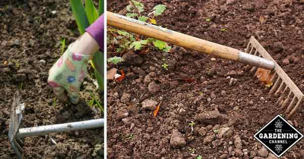 How To Weed Your Garden Gardening Channel