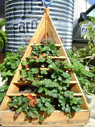 Building Raised Container Garden