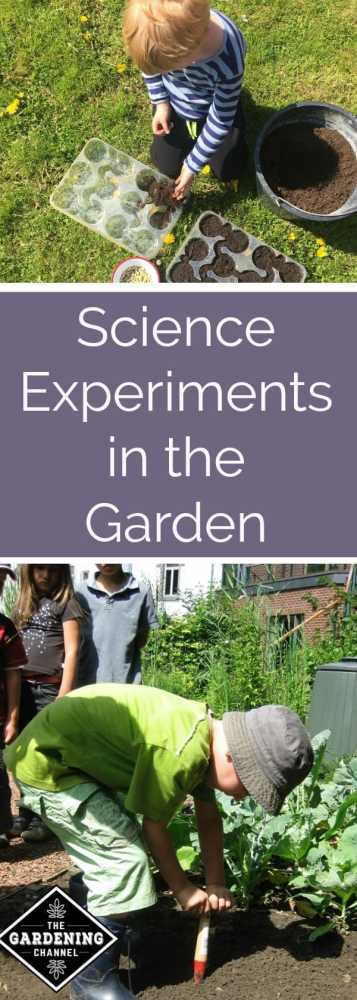 Gardening with children is the easiest way to make your own science experiment