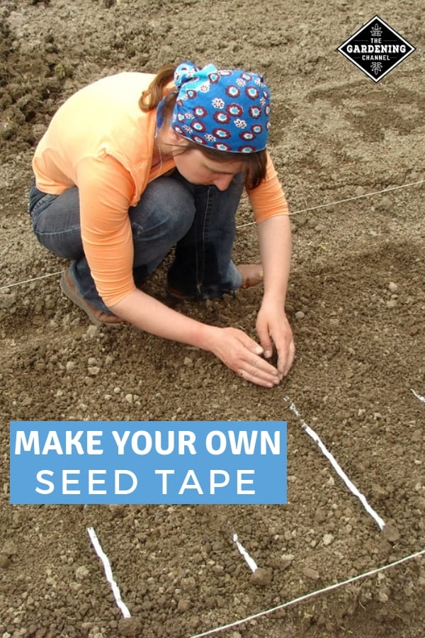 gardener planting seed tape with text overlay make your own seed tape