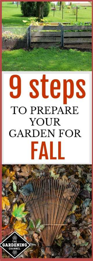 Steps to prepare your garden for fall