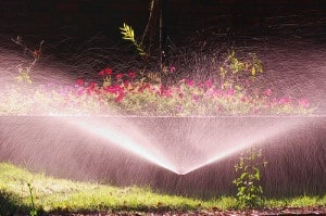 Shopping for sprinklers