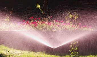 Shopping for Sprinklers for Gardens and Flower Beds