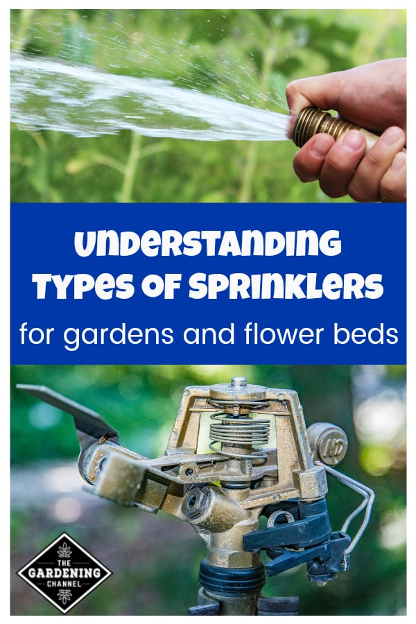 water hose spraying garden and sprinkler head for garden with text overlay understanding types of sprinklers for gardens and flower beds