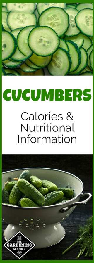 nutritional content cucumbers