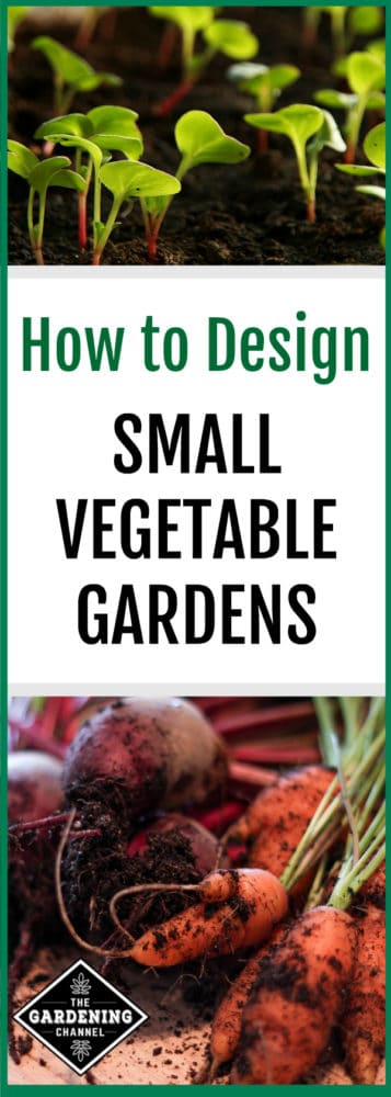 how-to-design-small-vegetable-gardens-357x1000 Pallet Vegetables Garden Design Layout on vegetable garden landscaping design, rose garden layout design, recipe layout design, herb garden design, potager vegetable garden design, modern vegetable garden design, perennial garden layout design, french kitchen garden design, attractive vegetable garden design, vegetable greenhouse design, backyard vegetable garden design, 20x20 vegetable garden design, orchard layout design, 4x8 bathroom design, my garden layout design, bulb garden layout design, landscape layout design, japanese garden design, vegetable gardening for beginners, vegetable seeds,
