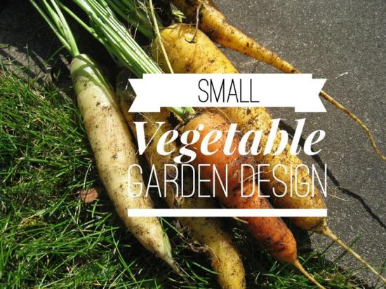 Small vegetable garden try these layout ideas gardening for Laying out a garden plan