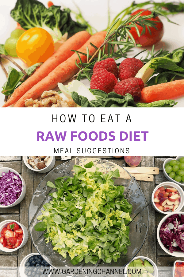 raw foods and raw foods meal with text overlay how to eat a raw foods diet meal suggestions