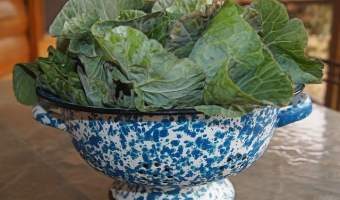 List of Cruciferous Vegetables to Grow