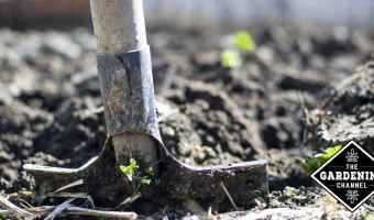 shovel in garden soil
