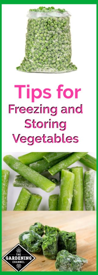 Tips for freezing and storing vegetables