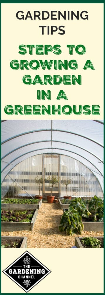 greenhouse with vegetable garden beds with text overlay gardening tips steps to growing a garden in a greenhouse