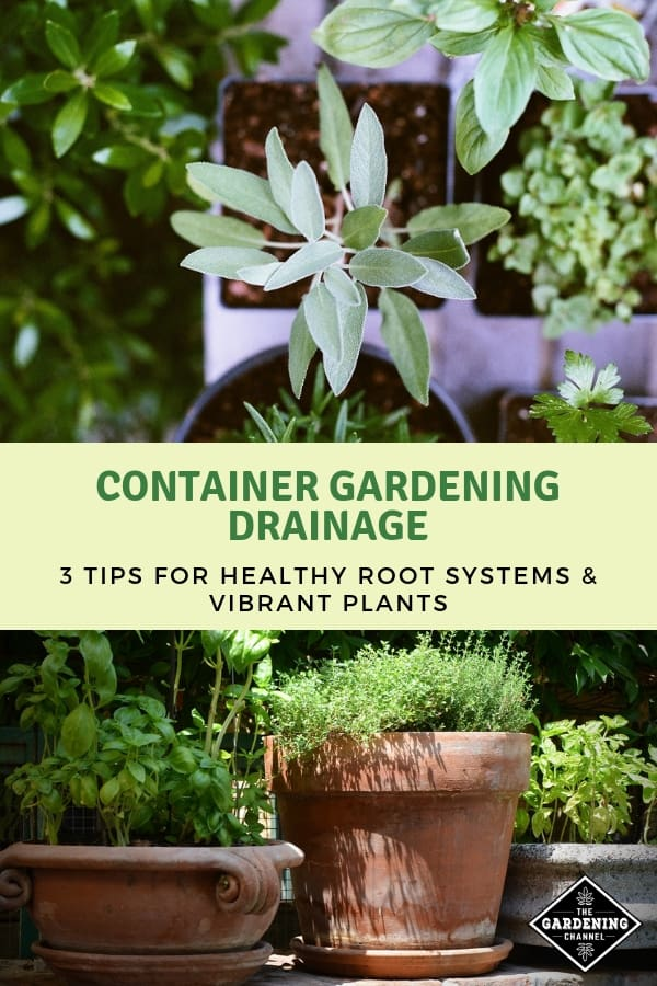 container herb garden and terracotte pot herb garden with text overlay container gardening drainage three tips for healthy root systems and vibrant plants