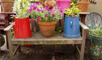 3 Great Tips for Container Gardening Drainage