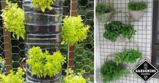 10 Fun Vertical Gardening Ideas - Gardening Channel