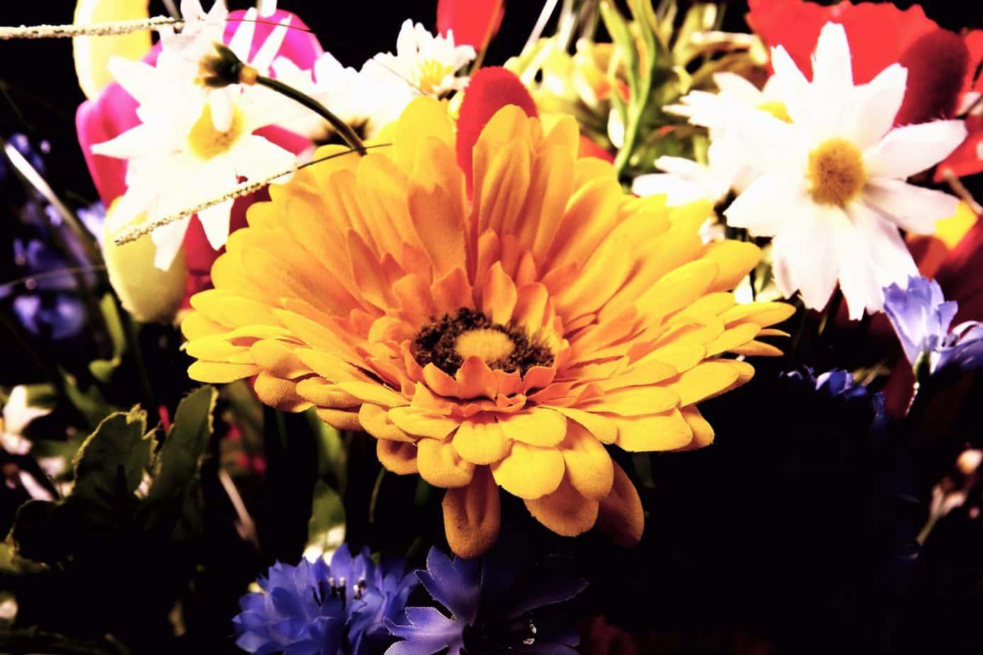 7 Best Flower Shops In Richmond Va Gardening Channel
