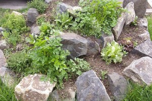 What is urban permaculture?